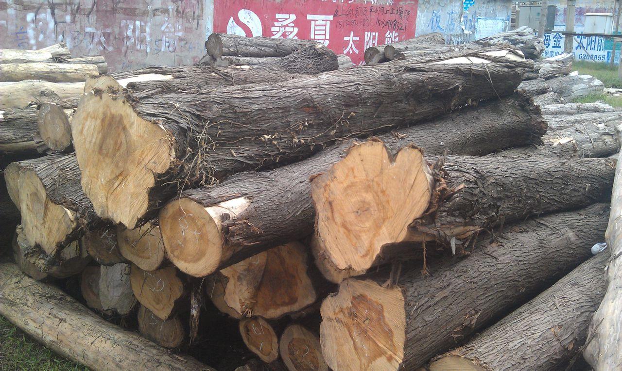 柏木适应性强、抗风力强、耐烟尘、纹理细直、质地坚硬、材质优良,常用于庙宇、殿堂、庭园等的建造,近期其市场价格呈现上涨趋势。根据搜木网供销数据库数据显示,口径为60的柏木最新市场报价为4200元/立方米。