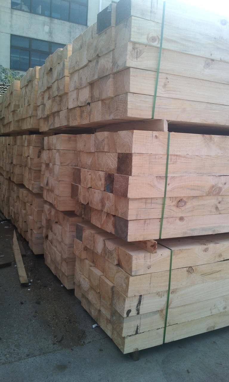辐射松木材纤维长,是生产高强度纸的好材料,用它可生产薄叶纸,印刷