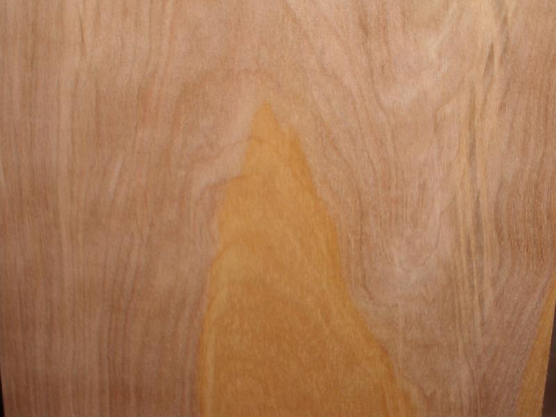 桦木异形面皮  1白橡木皮